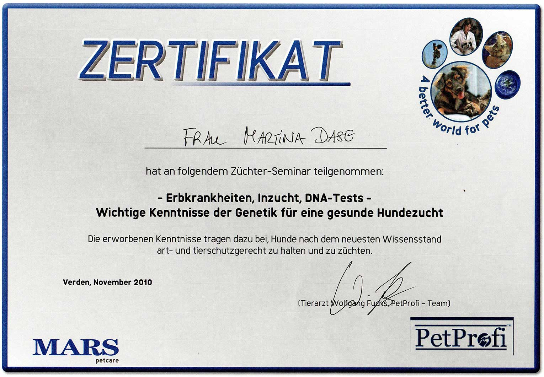 Zertifikat Martina Dase